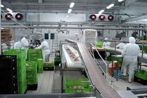 ISO 22000 gıda güvenliği yönetim sistemi,iso 22000 nedir,iso 22000 standardı,iso22000 ne demek,ıso22000 belgesi nedir,iso 22000 standard